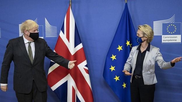 Brexit Deal: Shanker Singham Interview